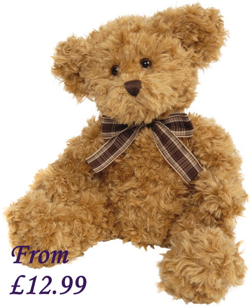 Lucas Teddy Bear Personalised with Custom Message