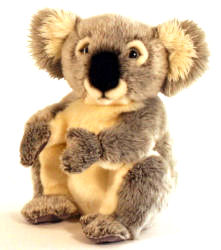 Personalised Koala Bear
