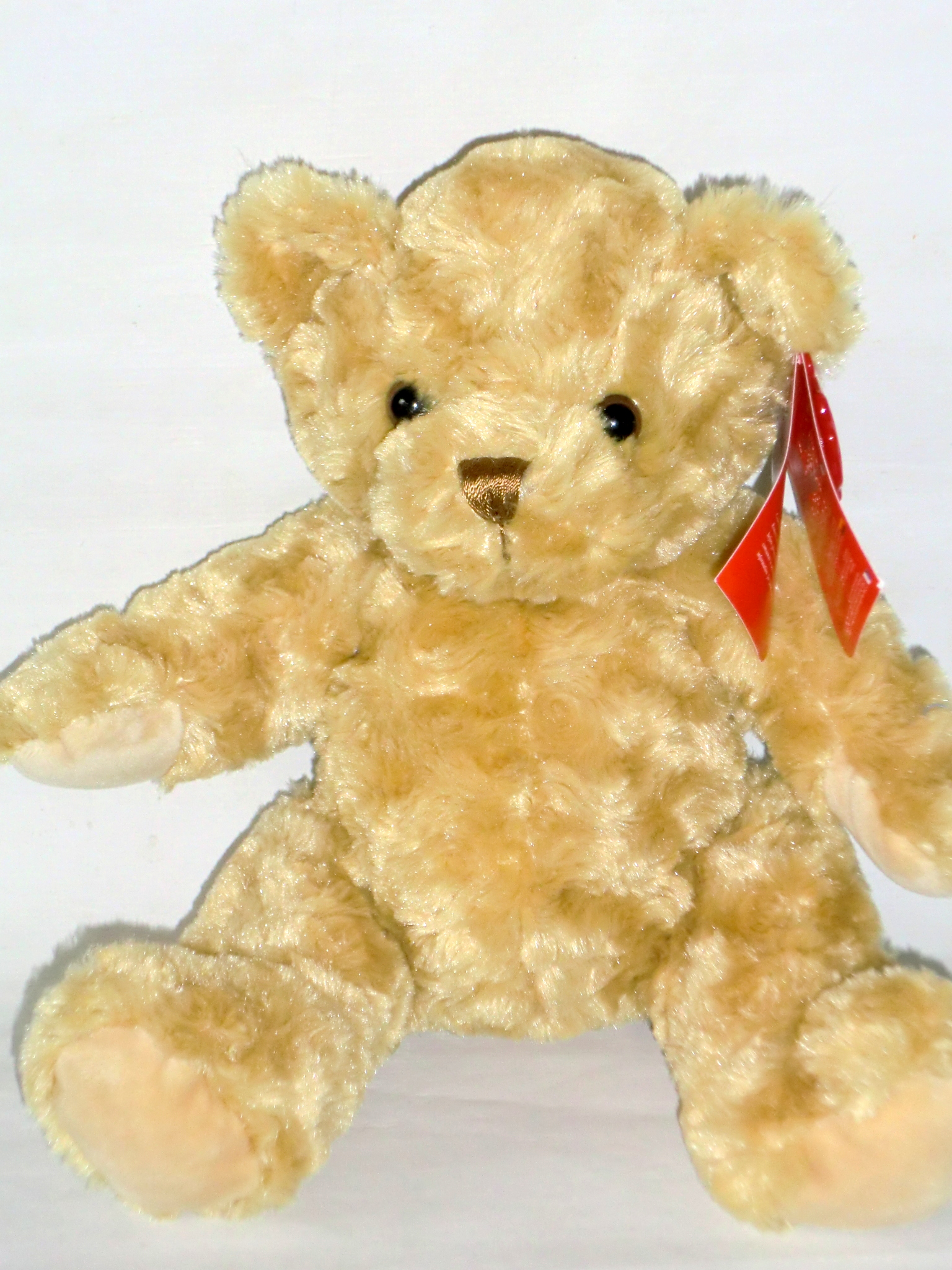 Teddy Traditional Bear